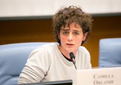 Camilla Orlandi, Responsabile del Dipartimento per l'Integrazione e l'accoglienza, Gestione immigrazione di ANCI