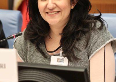 Ouejdane Mejri, Presidente dell'Associazione Pontes – Mediterraneo, docente all'Università di Roma Tre e al Politecnico di Milano