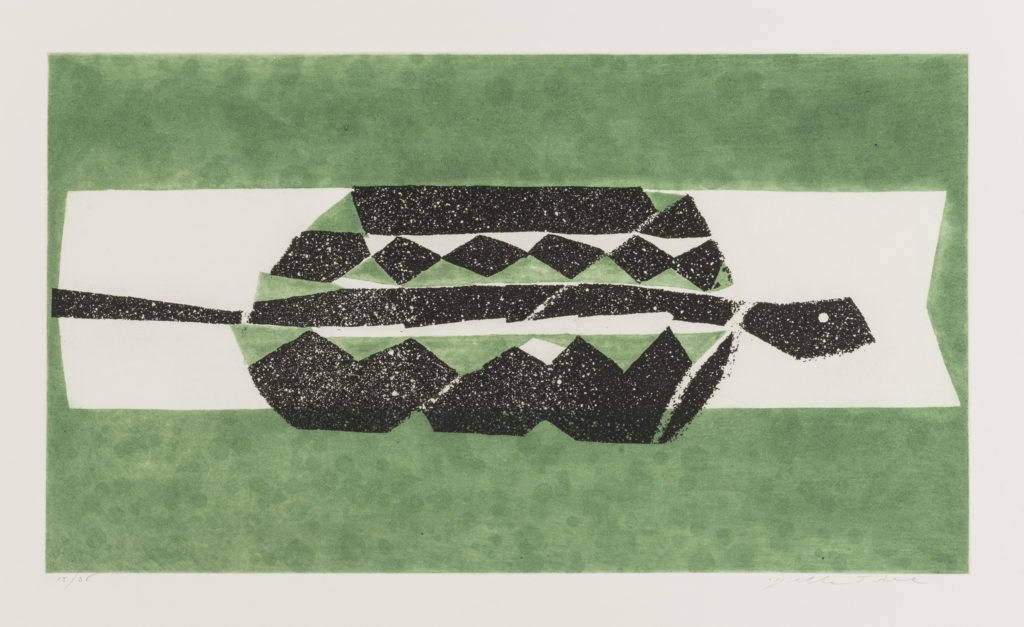 EnricoDELLA TORRE, Rettile, 1992, esemplare 15/36, Acquatinta a colori su due lastre, cm 50x70